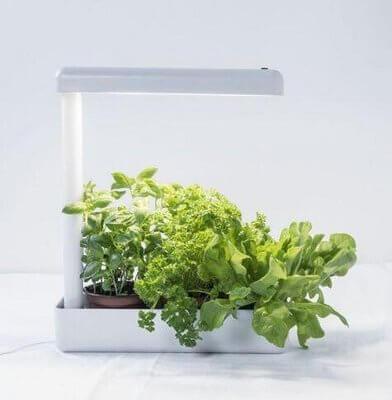 Airam herby